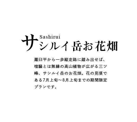 サシルイ岳お花畑登山ガイド情報